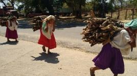 """Tres ancianas caminan con montones de leña en su espalda, una escena """"normal"""" en los pueblos de la Montaña y la Costa Chica. (Fotografía: Jonathan Cuevas/API)"""