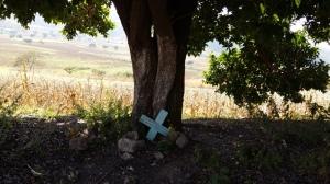En el camino que conecta a Chilapa con Zitlala, se pueden observar decenas de cruces junto a la carretera, que al parecer son de accidentes. Según la creencia en Zitlala, a las personas que son ejecutadas no se les pone cruz porque murieron entre el pecado. (Fotografía: Jonathan Cuevas/API)