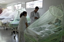 Asuncion, PARAGUAY: Dengue fever patients are treated at the Lacimet Hospital in Asuncion, 21 February 2007. According with Paraguayan Ministry of Health there are about 500 cases suspicious of dengue per day, in the area of Asuncion city. AFP PHOTO Norberto Duarte (Photo credit should read NORBERTO DUARTE/AFP/Getty Images)