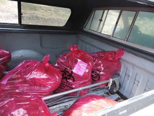 """Aspectos de la exhumación hecha por la Fiscalía de Guerrero el 20 de mayo del 2014, en Monte Hored, donde este 27 de marzo, casi dos años después, familiares de """"Los Otros Desaparecidos"""" encontraron más restos óseos."""